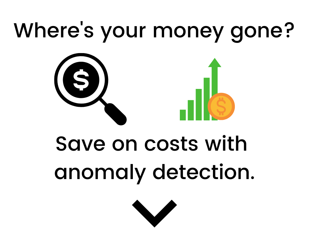 Save money with anomaly detection
